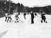 English: A hockey game in High Park, Toronto, Ontario, Canada.