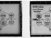 Stereoscopic image of