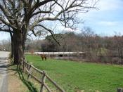 English: A field on the Town River, West Bridgewater Massachusetts, April 2010