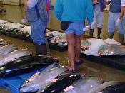 English: Fish auction in Hawaii (year 2000).