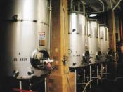 Modern fermenting tanks.
