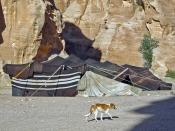 English: Bedouin tent in Petra (Jordan)