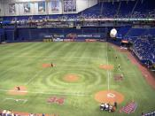 A Minnesota Twins game at the Metrodome