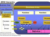 FEA business reference model: Processes are a group of related business activities performed to produce an end product or to provide a service. Unlike business functions that are performed on a continual basis, processes are characterized by the fact that