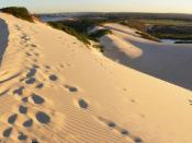 Sand Dunes in the Sutherland Shire, New South Wales, Australia. Two photo stitch