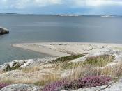 Sandhaken, Saltö