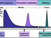 The time-course of an immune response begins with the initial pathogen encounter, (or initial vaccination) and leads to the formation and maintenance of active immunological memory.