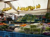 markets in dordrecht