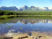 Reflection of mountains in Bierstadt lake. Also, two ducks. Digital photograph taken by uploader, August 2005.