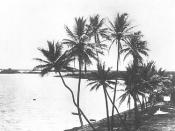 English: Puʻuloa (Pearl Harbor) in the 1880s.