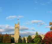 English: Fall colours surround University College.
