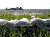 English: Holt County, MO, 5-18-07 -- Sand bags lie on top of a levee in the northwest section of Missouri. Hundreds of residents and thousands of acres of farm land were destroyed when flood waters breached the levees in the area. Photo by Patsy Lynch/FEM
