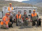 English: Image of an upland game (quail) hunt in the Mojave desert in California.