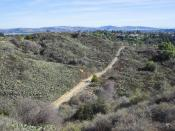 English: A view of Coyote Hills in Fullerton, California.