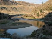 Loomis river