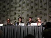 Smallville panel
