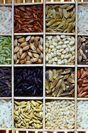 Rice Diversity. Part of the image collection of the International Rice Research Institute (IRRI) .