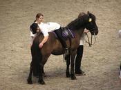 English: Therapeutic horseback riding horse show, Císařský ostrov, Prague, Czech Republic Česky: Ukázka hipoterapie na výstavě koní v Praze na Císařském ostrově.