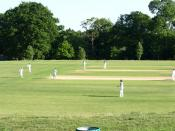 English: Cricket match in progress. Cricket Match - I think Ampthill v Cople