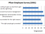 English: Pfizer Survey