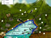 English: A freshwater aquatic and terrestrial food-web.