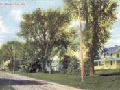 Fort Street c. 1910