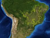 This is a map showing the location of the Cerrado ecoregion as delineated by the World Wide Fund for Nature. I, Pfly, made it using NASA Blue Marble imagery and ecoregion GIS data which I simplified and digitized in Photoshop.