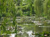English: Monet's garden at Giverny