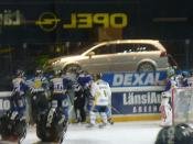 Fighting in Finnish Ice Hockey