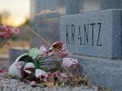 Krantz, Neglected