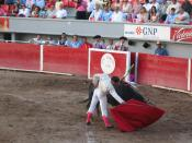 Matador (Bull fighter) en la Feria Nacional de San Marcos en Aguascalientes 2006, Mexico.