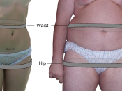 English: Image illustrating the measurement of the parameters of waist-hip ratio.