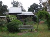 Bird Nesting sites around garden
