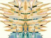 Fuji Butterfly