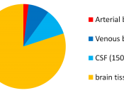 Intracranial volumetric distribution of cerebrospinal fluid, blood, and brain parenchyma
