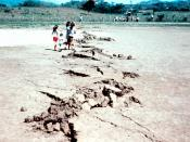 Guatemala Earthquake 1976. Along Motagua fault trace where it crosses the Gualán soccer field. Note that