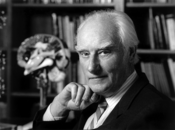 Francis Crick in his office. Behind him is a model of the human brain that he inherited from Jacob Bronowski.