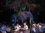 The inside of the Rainforest Cafe at Disney's Animal Kingdom