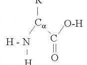 A-amino-acid