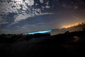 bioluminescent dinoflagellates producing light in breaking waves