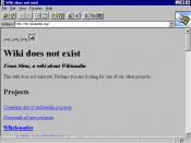 Internet Explorer 1