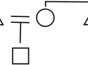Kinship-atome