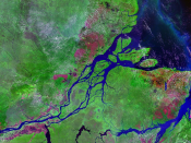 A false-color satellite photograph of the Amazon River in Brazil.