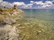 English: Lakeside of the Mono Lake with Tufa columns in the Mono Lake Tufa State Reserve, California, United States. Deutsch: Küste des Mono Lake mit Kalktuff-Türmen im Mono Lake Tufa State Reserve, Kalifornien, USA. Français : Rive du Mono Lake, avec en
