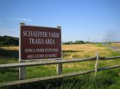 Schaeffer Farm-1