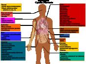 Cystic fibrosis manifestations