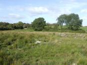 English: Countryside west of Galway city The flat lands south of Lough Corrib are a mix of rough fields and woodland like this.