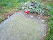 The gravestone of Ludwig Wittgenstein has started to attract small tributes in recent years.