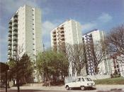 Español: Las torres del Conjunto San Pedrito (Barrio Mariano Castex) poco después de su inauguración, hacia 1980. Se encuentran en el barrio de Flores, en Buenos Aires, Argentina.