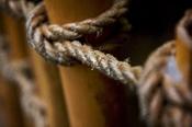 Hemp rope at the Dallas, Texas, U.S.A. World Aquarium